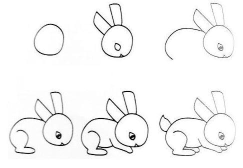 一笔一笔学画画--小松鼠